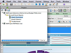Visual Basic: Program easily across both Macs and PCs.