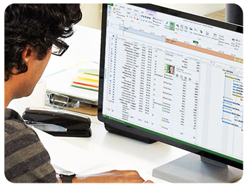 Microsoft Project For Team Members